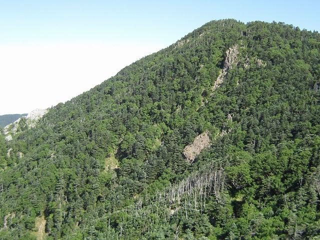 s-原生自然環境保全地域 (2)