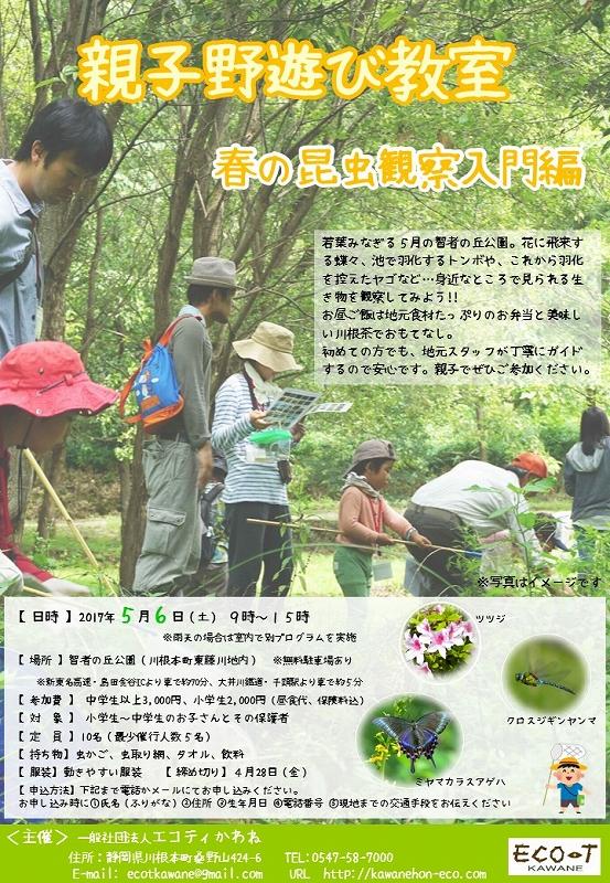 s-0506昆虫観察会