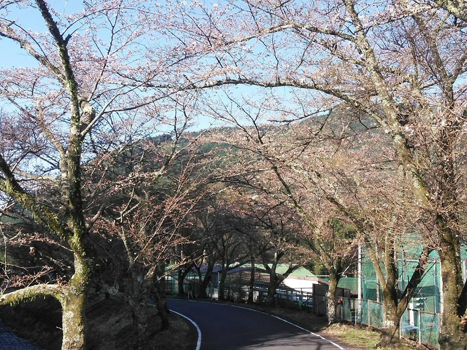 0325tokuyama
