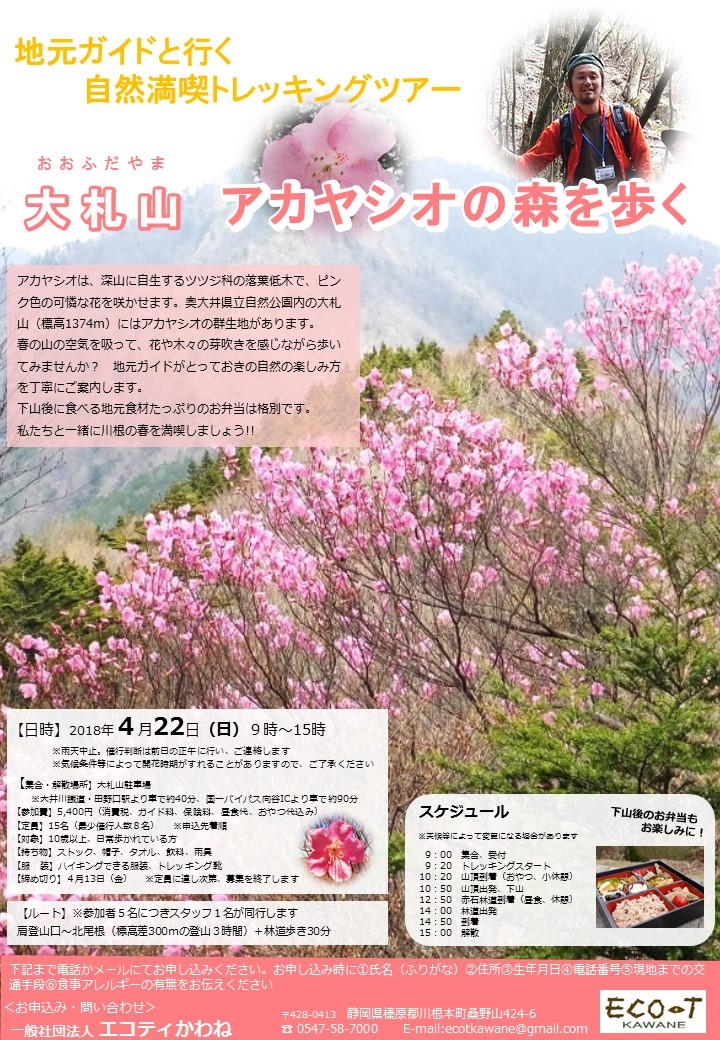 0422大札山アカヤシオ