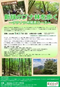 0527新緑のブナ林