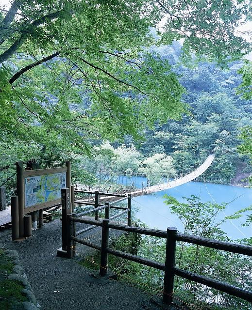 s夢の吊橋2