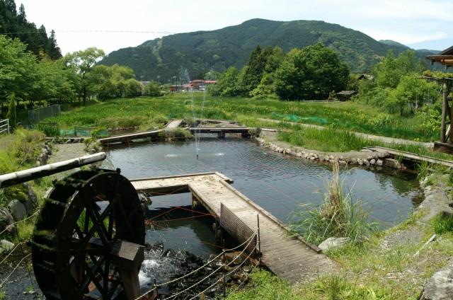sときどんの池